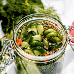 Best quick and easy homemade refrigerated pickles with seeds and dill. recipe and food photography @lachicabites