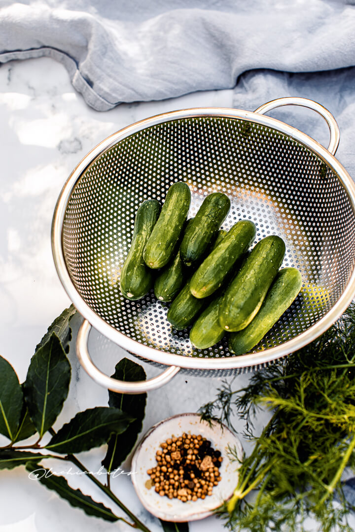 Small cucumbers and seeds for homemade pickles